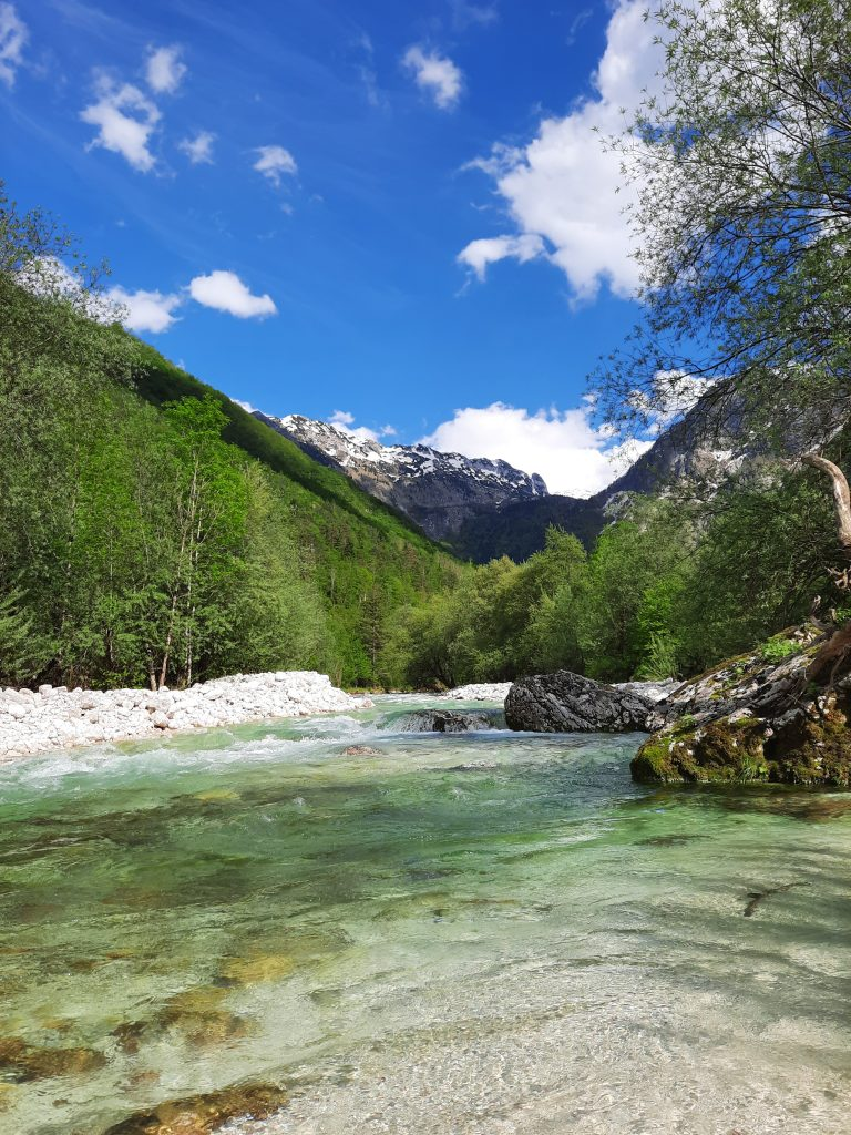 dolina Lepena in Lepenca v Triglavskem narodnem parku sta bivališče povodnega kosa
